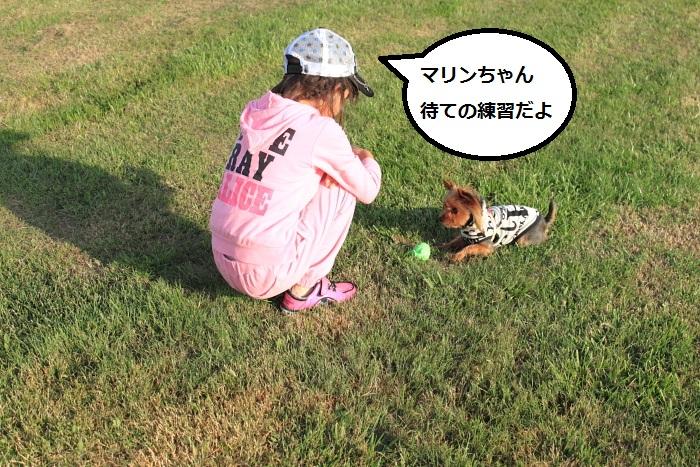 20140724-005.jpg