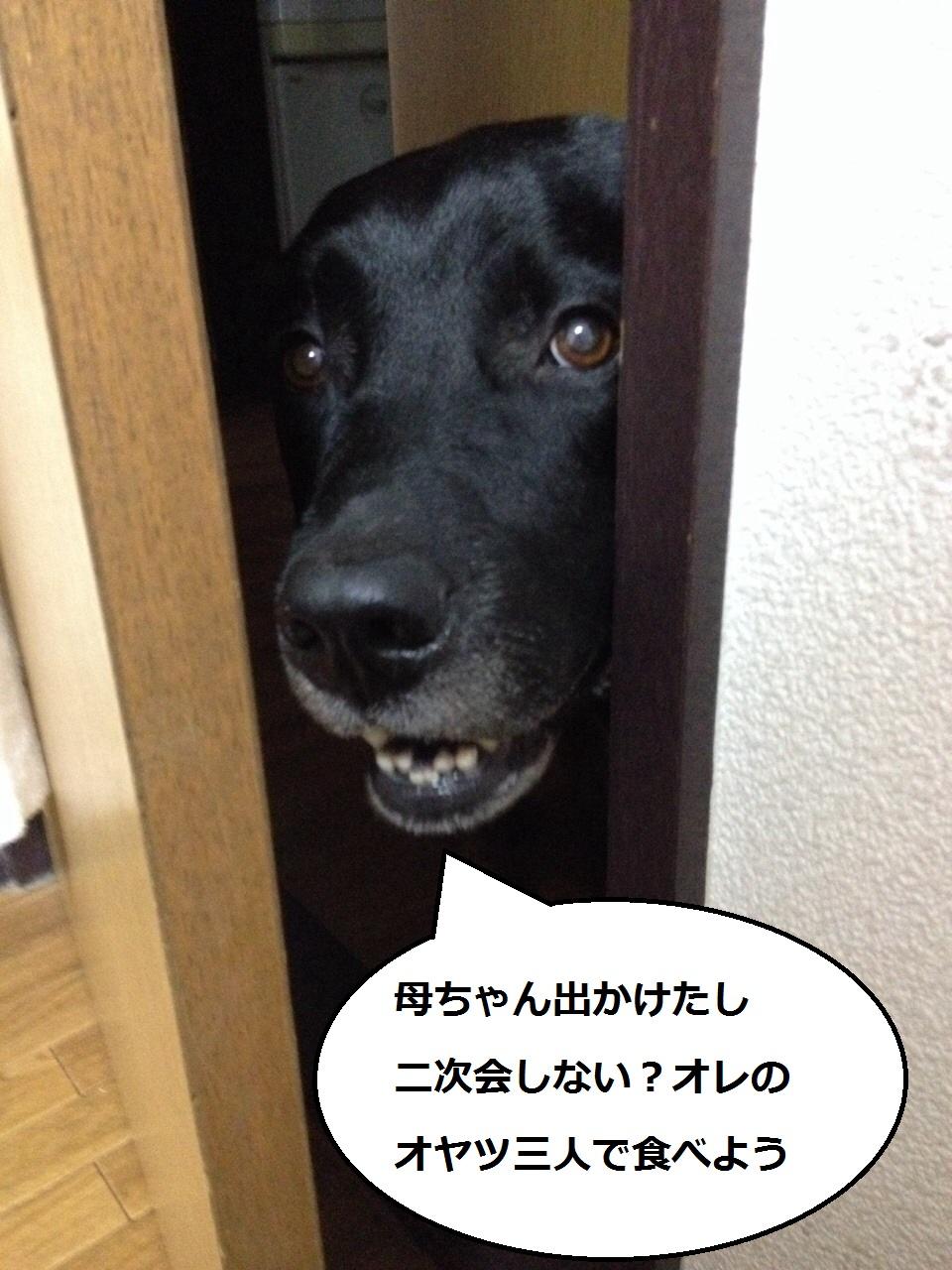 20140731-002.jpg