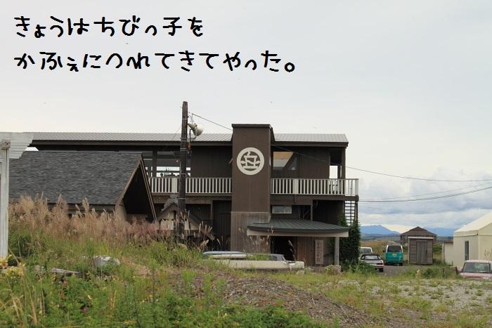 20140821-011.jpg