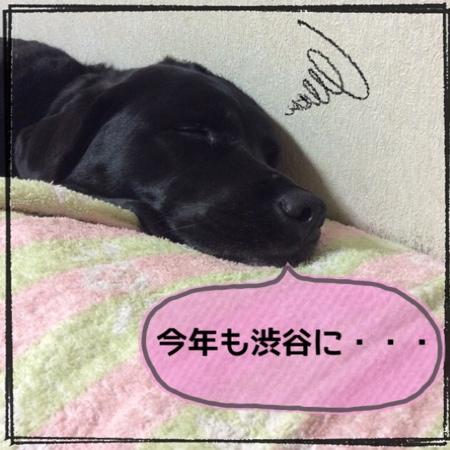 fc2blog_201405311534031f0.jpg