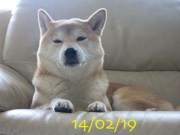 140219 1