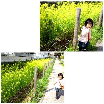 20140409R2.jpg