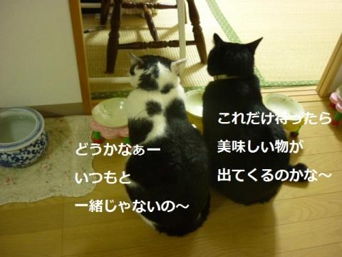 006どうかなぁ~
