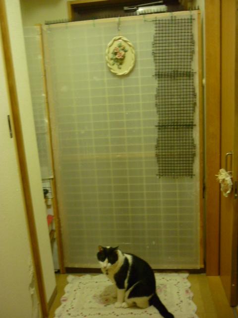 脱走防止ドア1