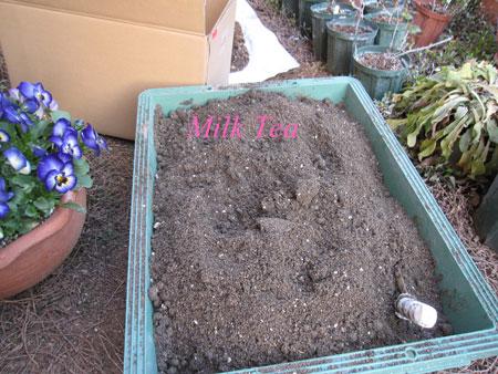 発酵肥料2