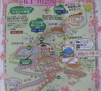 20140311sakura.jpg