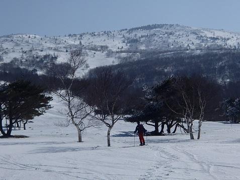 スキーコースと合流