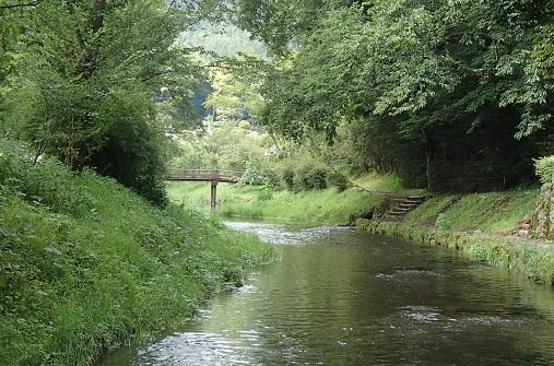 忍野を流れる桂川