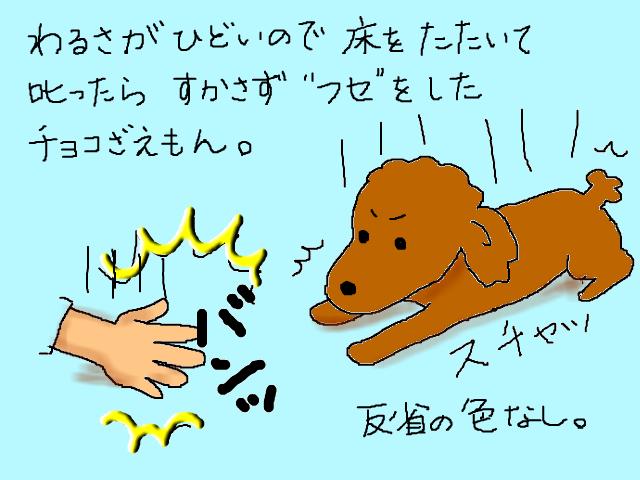 snap_sachimonacho_201463232856.jpg