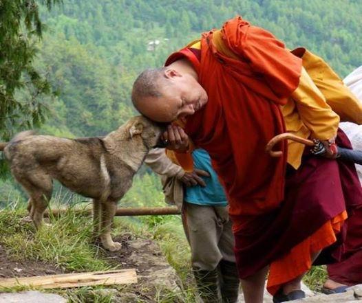 1012014517僧侶