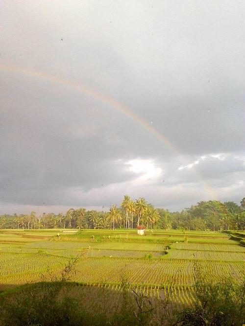 2014810虹