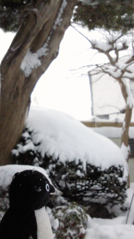 20140208-雪景色 (1)