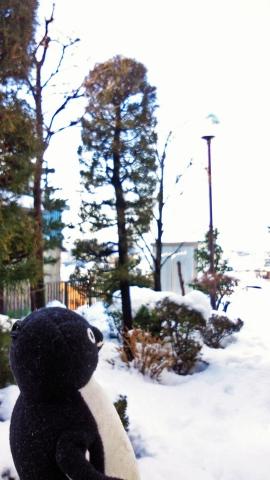 20140209-雪かき (2)-加工