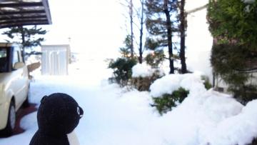 20140209-雪かき (6)-加工