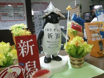 20140430-あおば通り駅