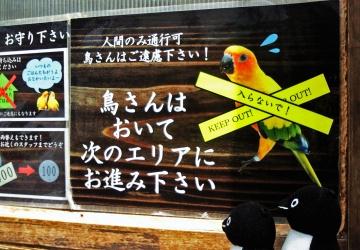 20140523-花鳥園 (56)-加工