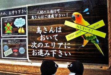 20140523-花鳥園 (57)-加工
