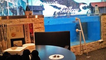 20140713-ペンギンのいる Bar (5)-加工