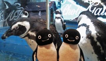20140713-ペンギンのいる Bar (13)-加工