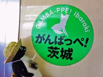 20140721-行きの鹿島臨海線 (8)-加工