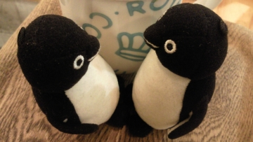 20140802-ペンギンビューティー (1)