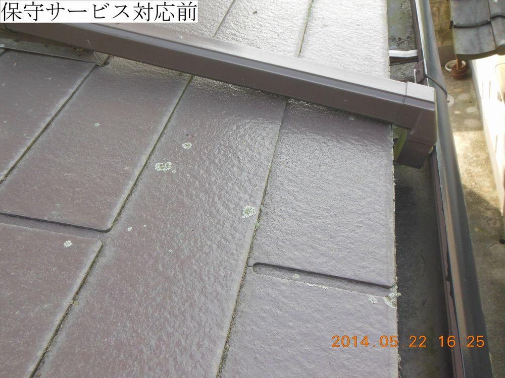 DSCN3167web.jpg