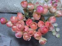 薔薇蕾小1