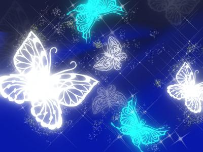 蝶々 イラスト1