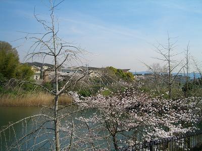 南泉ヶ丘2B