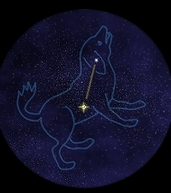 Canis Minor1