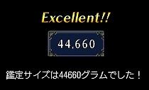 44660g.jpg