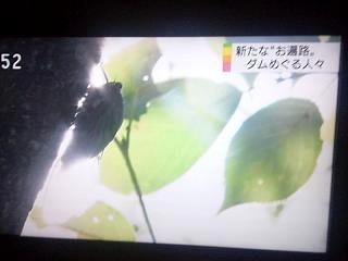 20130827佐藤先輩(その2)