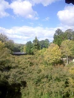 20131017東福寺(その40)