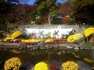 20131109二本松菊人形祭り(その5)