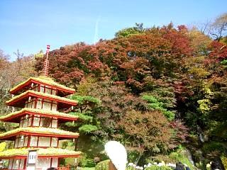 20131109二本松菊人形祭り(その10)
