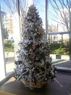 20131214プールのツリー