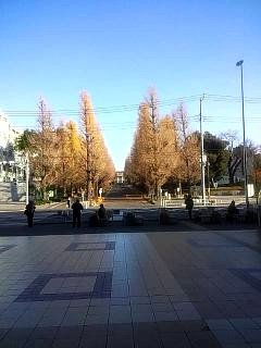 20131215日吉
