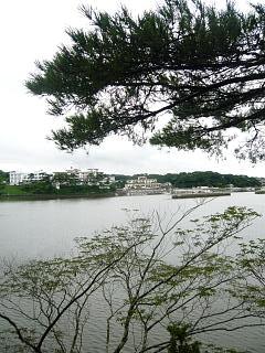20130908福浦島(その22)