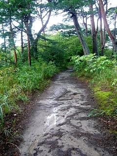 20130908福浦島(その24)