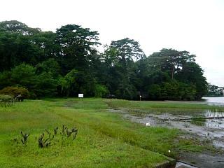 20130908福浦島(その28)