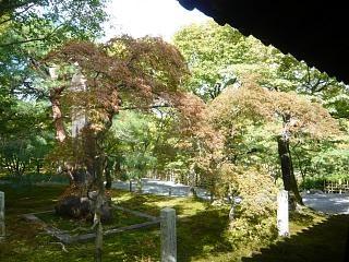 20131017東福寺(その18)