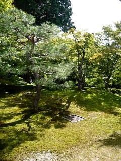 20131017東福寺(その22)