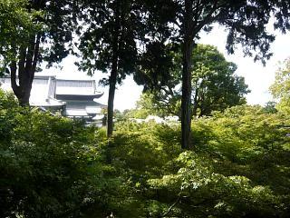 20131017東福寺(その24)