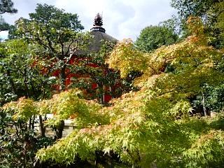 20131017東福寺(その35)