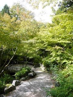 20131017東福寺(その39)