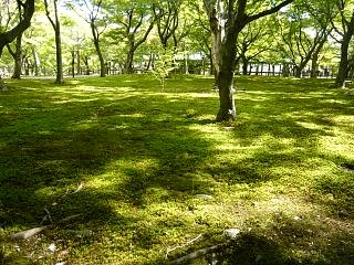 20131017東福寺(その44)