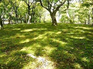20131017東福寺(その45)