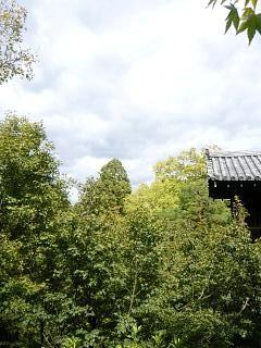 20131017東福寺(その48)