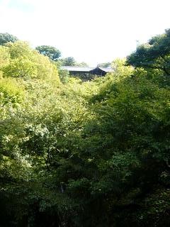 20131017東福寺(その52)