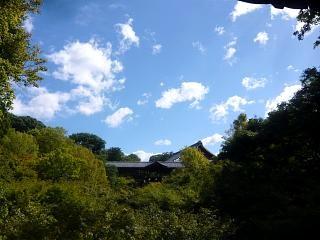 20131017東福寺(その53)
